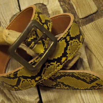 """画像5: """"Gold Python BELT"""""""